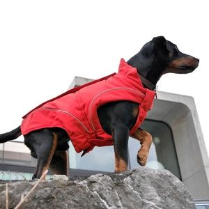 Dog Winter Jacket Red Designer Quality (XS)